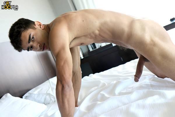 Pau grande gay